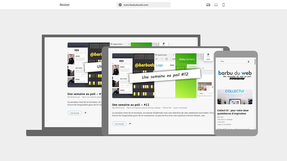 Viewer interactif Google Resizer